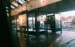 Meeting Benjamin – A Heartfelt Encounter on the Metro