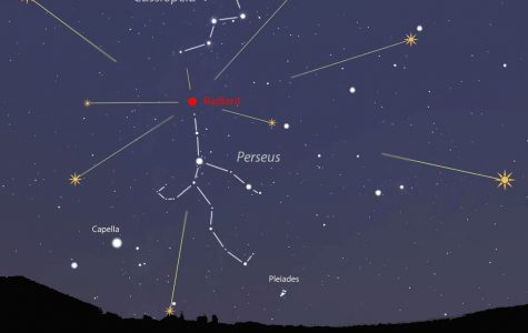 Students Watch Annual Perseids Shower Outburst