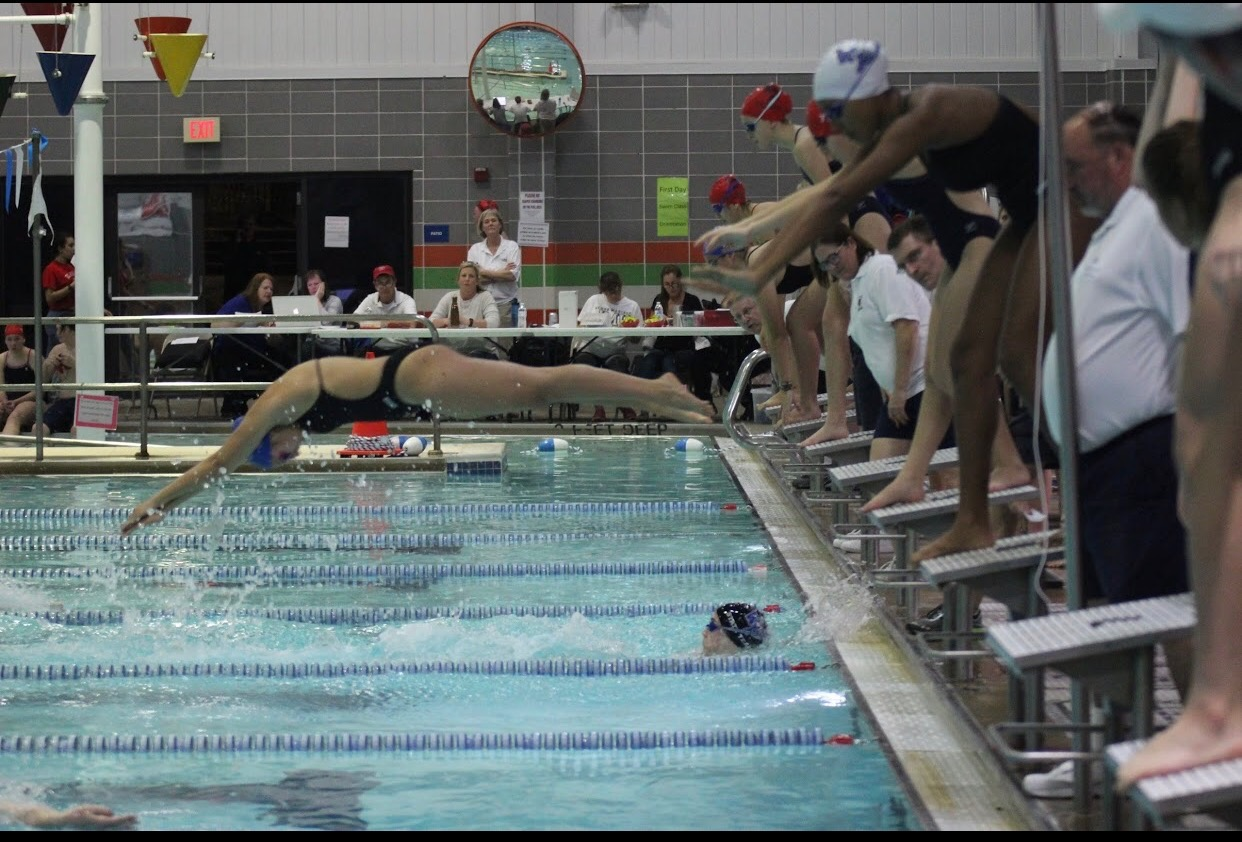 Skopp-Cardillo diving into the pool for a swimming race.